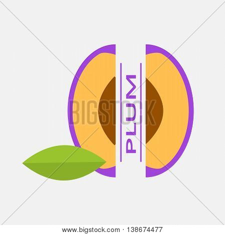 Vector Illustration of the plum with the text.