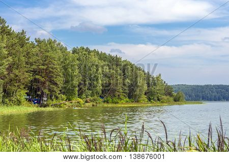 summer landscape river Russia Novosibirsk region Siberia the river Berdnature forestpineconiferousSunny dayseasonsreed relax a savage