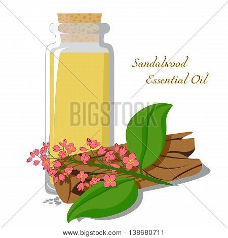 Small bottle with essential oil of sandalwood with blooming branch on the background