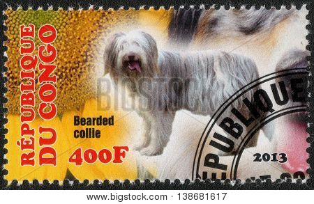 CONGO - CIRCA  2013: A post stamp printed in Congo shows a series of images Bearded Collie