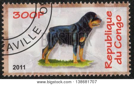 CONGO - CIRCA  2011: A post stamp printed in Congo shows a series of images Rottweiller