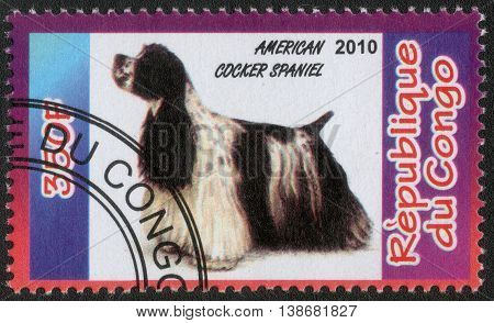CONGO - CIRCA  2010: A post stamp printed in Congo shows a series of images cocker spaniel