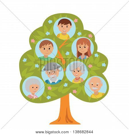 Cartoon generation family tree illustaration isolated on white background. Family tree in flat style grandparents parents and little boy.