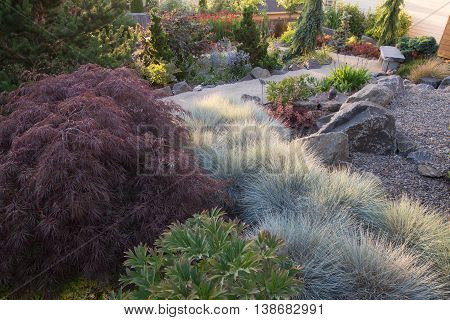 A sandy path winds through this collection of perennials and blue fescue in the late afternoon sun.