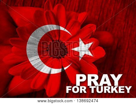 Turkey flag with hand holding flower with word Pray for Turkey