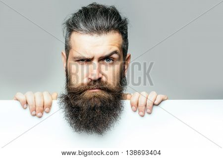handsome bearded man with long lush beard and moustache on serious face with white paper sheet in studio on grey background copy space