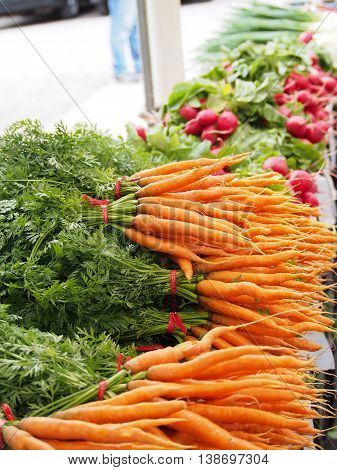 Fresh garden grown produce, fresh vegetables, garden