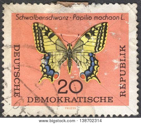 MOSCOW RUSSIA - CIRCA JANUARY 2016: a post stamp printed in DDR shows a butterfly with the inscription