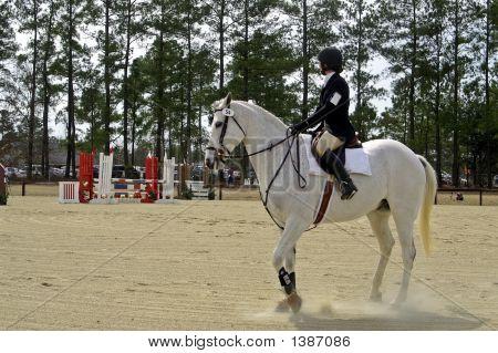 Horse Trials 5