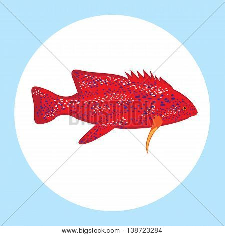 Sea color flat design fish Tropical fish on wihite background