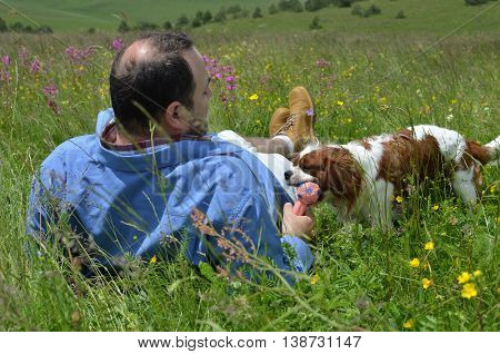 Man lying on a field with green grass and wildflowers playing with his dog with doggy toy