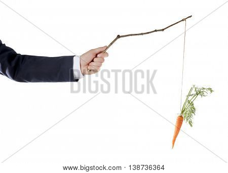 Motivation concept of hanging carrot on stick, isolated on white
