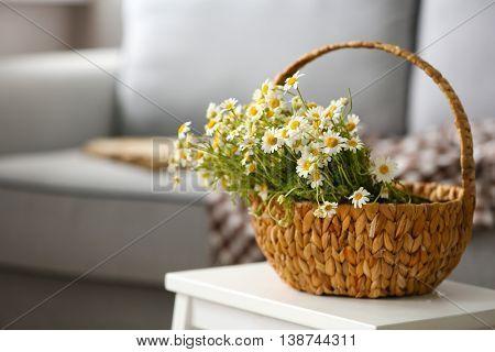 Chamomile bouquet in wicker basket