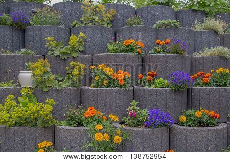 Potted flowers on a staircase in full bloom leading to a garden or patio