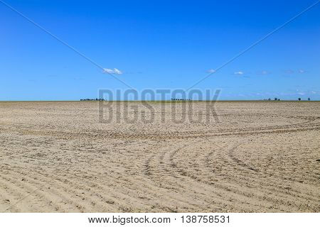 Tractor Tracks On A Field