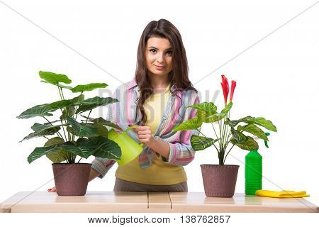 Woman taking care of plants isolated on white