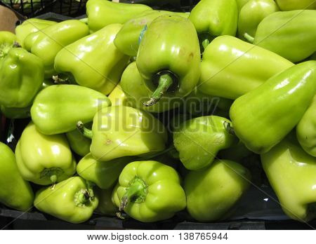 Fresh organic green bell peppers (capsicum) in a box at the market