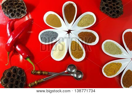 Colorful variety of Indian spices on red background