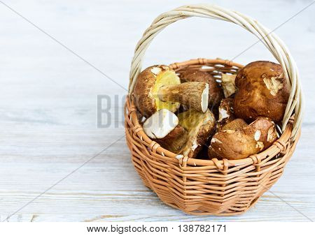 Placer white mushrooms in a wicker basket. Light wood background.