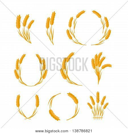 Set of wheat Ears vector illustrations. Flat design. New harvest, grain growing concept. Collection for bakery, bread store, agricultural company logo design. Ripe ears on white background.
