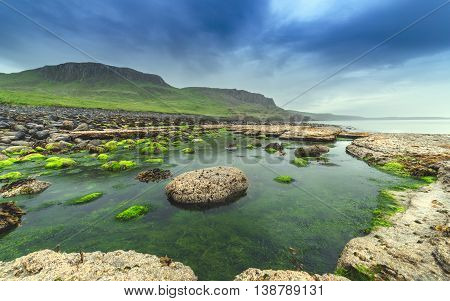 Low Tide Stones Covered in Green Moss - South Coast of the Isle of Skye in Scotland