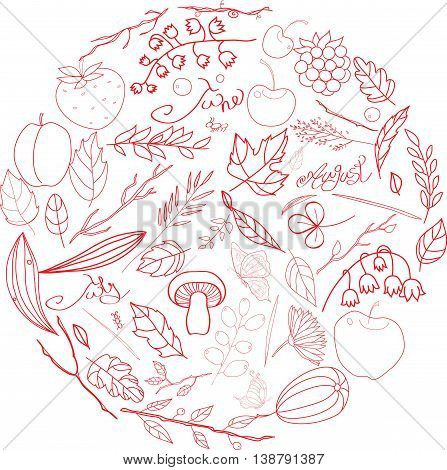 Set of summer vegetable elements berries leaves fruits flowers insects butterfly. inscriptions June July August