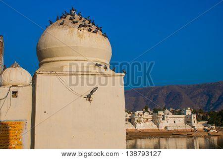 Pushkar. India.