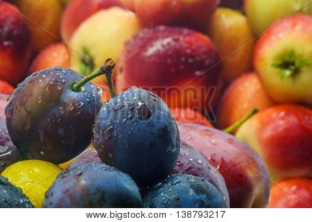 Fresh fruit plums and apples with water drops