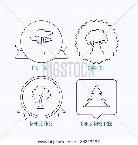 Pine tree, maple and oak-tree icons. Forest trees linear signs. Award medal, star label and speech bubble designs. Vector