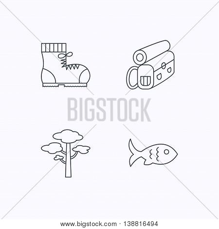 Pine tree, fish and hiking boots icons. Bonfire linear sign. Flat linear icons on white background. Vector
