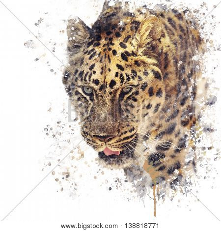Digital painting of Leopard portrait