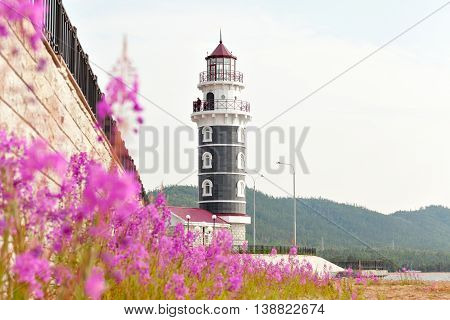 View of lighthouse through the flowers Purple Alpine Cyprus. Lighthouse on the coast of Lake Baikal. Resort Goryachinsk, Siberia. Russia.
