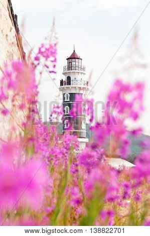 View of lighthouse through the flowers Alpine Cyprus. Lighthouse on the coast of Lake Baikal. Resort Goryachinsk, Siberia. Russia