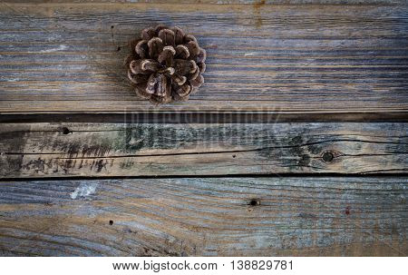 Bump On A Beautiful Wooden Background