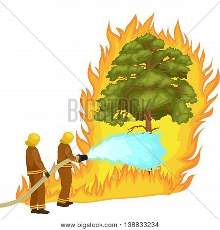 Firefighters in protective clothing and helmet with helicopter extinguish with water from hoses dangerous wildfire.Man fighter rescue helicopter put out the fire in forest landscape damage vector