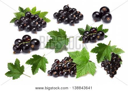 Set Of Blackcurrant Berries (ribes Nigrum) And Leaves, Paths