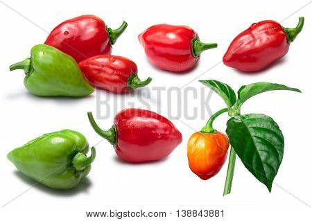 Set Of Red, Orange And Green Habanero Peppers