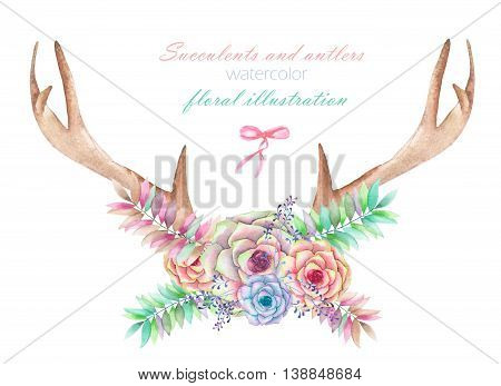 Floral watercolor illustration with the antlers, entwined succulents, flowers, leaves and branches, for decoration, isolated hand drawn on a white background, wedding design