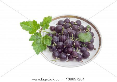 Berries of fresh jostaberry and leaves on a saucer on a light background