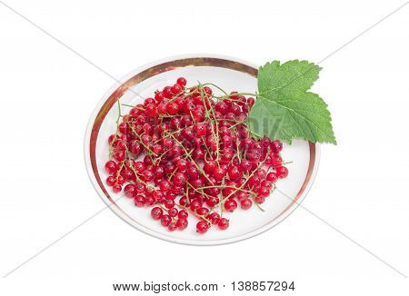 Berries of fresh redcurrant and leaf on a saucer on a light background