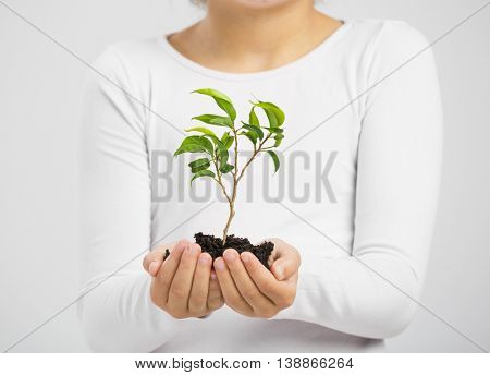 Cute little girl holding a green plant oh her hands
