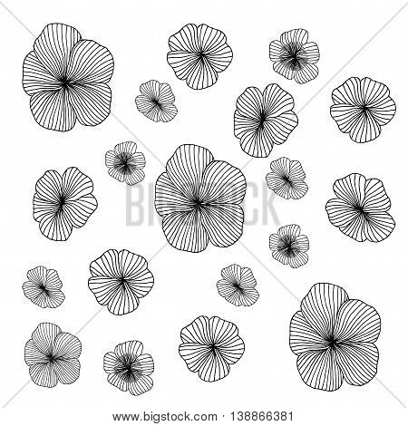 Set of Vectorized Flowers. Hand drawn vector stock illustration. Black and white whiteboard drawing.