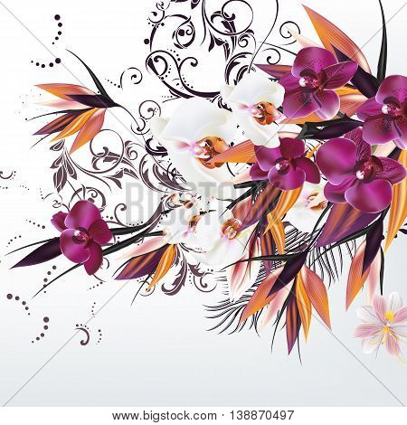 Fashion vector background with tropical flowers and plants orchids leafs and ornament