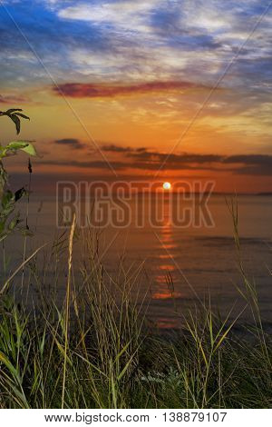 beautiful orange sunset over loop head with silhouetted wild tall grass on the wild atlantic way in ireland