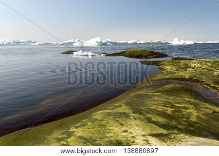 icebergs on the arctic ocean at Ilulissat town of Greenland