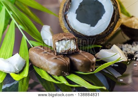 candy coconut chocolate closeup on a palm leaf