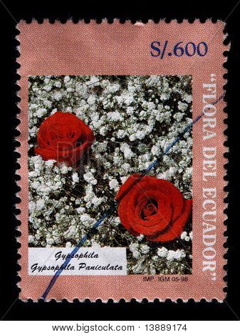 Ecuador - Circa 1998: A 600 Sucre Stamp Printed In Ecuador Shows The Two Red Roses In A Bed Of White