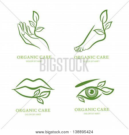 Vector logo label emblem set. Female hand foot eye lips with green leaves isolated. Concept for beauty spa salon cosmetic manicure pedicure and organic body care.