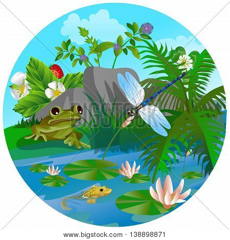 vector summer illustration of nature in the circle in the form of insect life in the forest in a clearing in the grass. Frog and Dragonfly on lake
