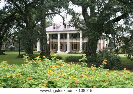 Southern Plantation In Louisiana